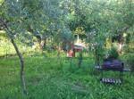 Il Giardino Del Gallo