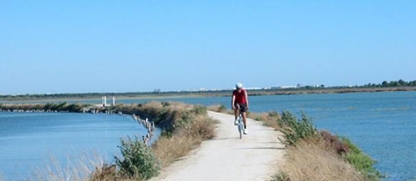 Fotografía de San Fernando: Carril de bici por la costa de Cadiz