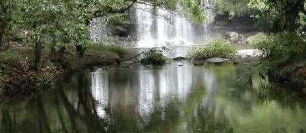 Fotografía de Costa Rica: Monteverde