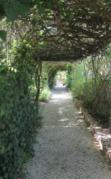Foto geral - Canavial Garden (Adults Only)