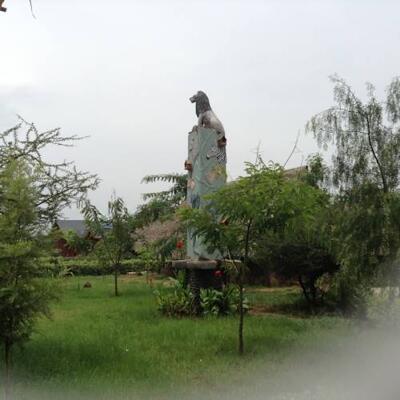 Bild - Aa Lodge Amboseli