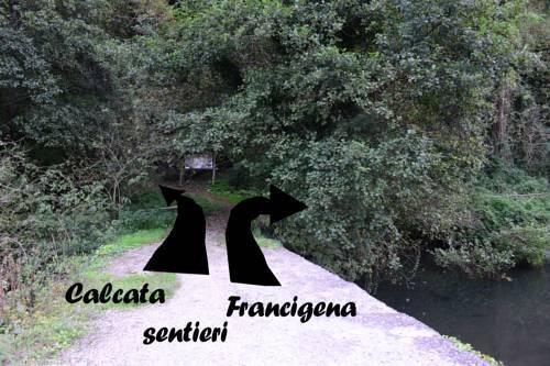 Foto generica Il Girasole