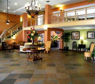 Exterior – Holiday Inn Express Hotel Clearwater East - Icot Center