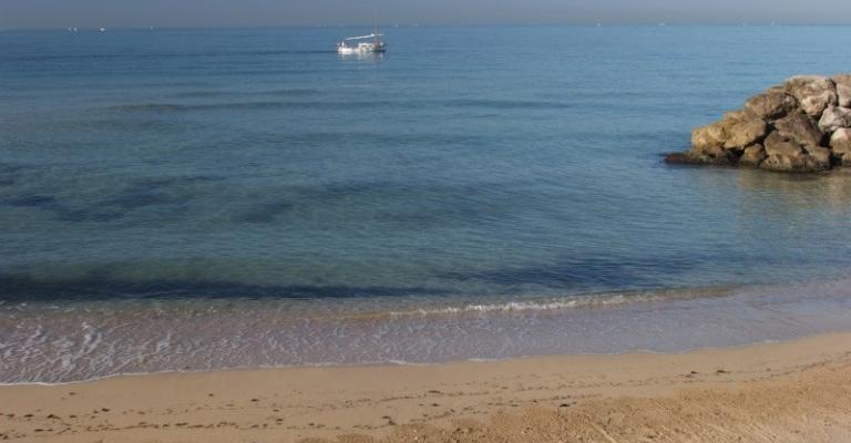 Picture El Arenal: La playa de El Arenal