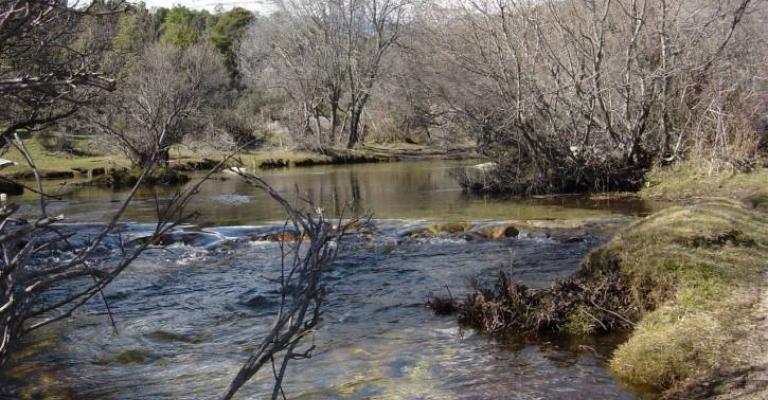 Fotografia de Manzanares el Real: El Parque Manzanares