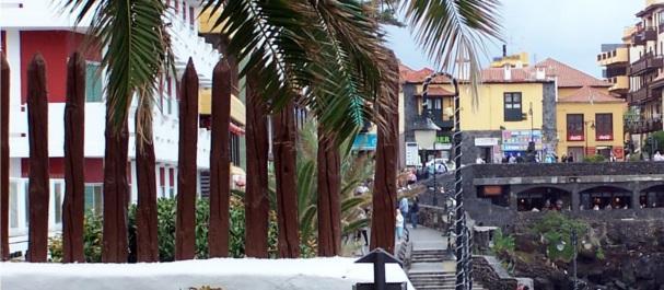 Fotografía de : Puerto de la Cruz