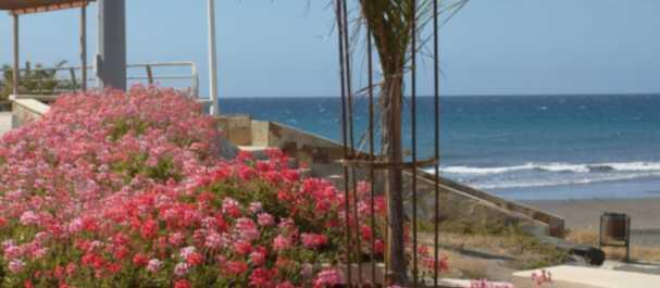 Fotografía de Gran Canaria Island: El paseo de San Agustín
