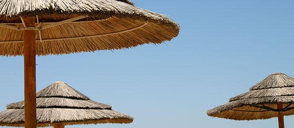 Fotografía de Santa Úrsula: Santa Ursula
