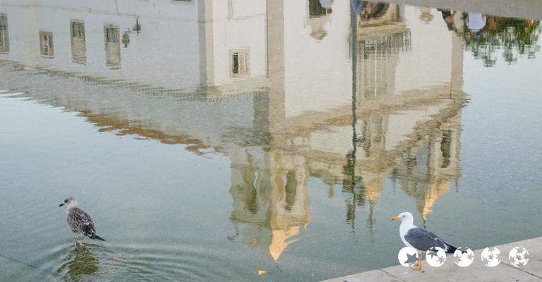 Fotografia de Portugal: Lagos
