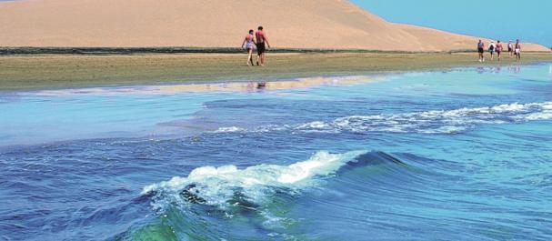 Fotografía de Isla de Gran Canaria: Playa de Maspalomas