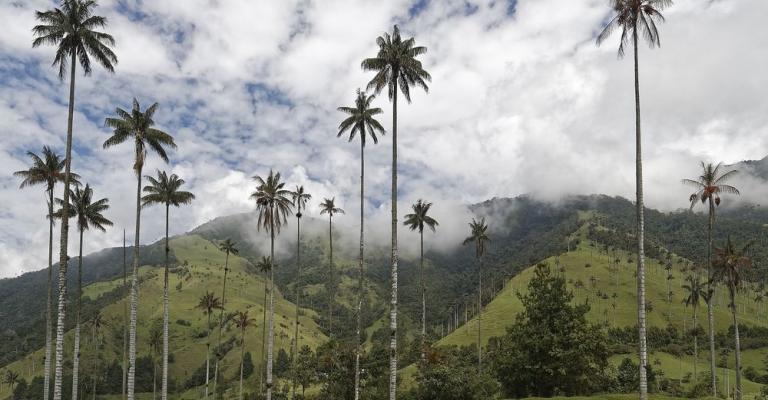 Fotografía de Colombia: Colombia paisaje